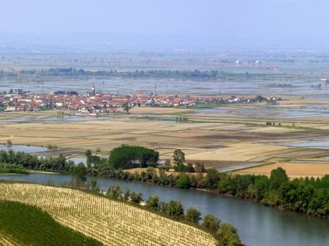 """Dolina reke Po – italijanska """"zdela pirinča"""""""